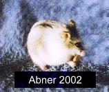 Abner